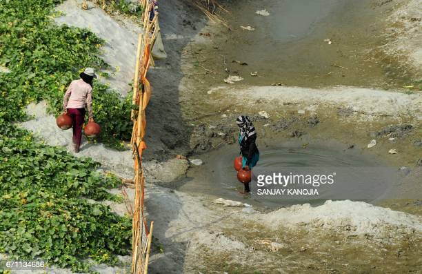 Indian farmers collect water from a temporary pond to irrigate their cucumber farm near a river bed area of the River Ganges in Allahabad on April 21...