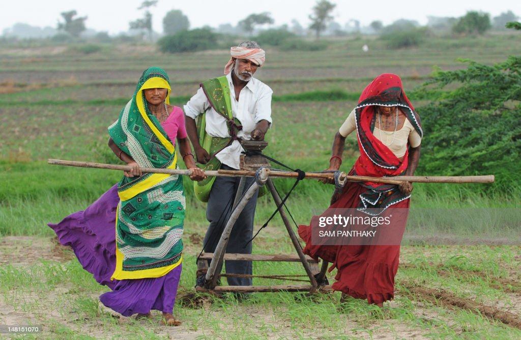 Indian farmers Hansaben(L), Geetaben (R) and Jesingbhai (C) plough a field in preparation for sowing cotton seeds in Nani Kisol village, around 70 km from Ahmedabad on July 11, 2012. Agriculture contributes about 15 percent to India's GDP but only 40 percent of farms are irrigated. The livelihood of hundreds of millions in the country of 1.2 billion people is dependent on the farming sector. AFP PHOTO / Sam PANTHAKY