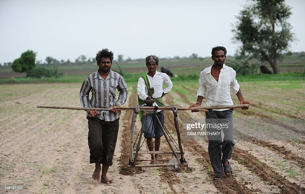 Indian farmers plough a field in preparation for sowing cotton seeds in Nani Kisol village, around 70 km from Ahmedabad on July 11, 2012. Agriculture contributes about 15 percent to India's GDP but only 40 percent of farms are irrigated. The livelihood of hundreds of millions in the country of 1.2 billion people is dependent on the farming sector. AFP PHOTO / Sam PANTHAKY