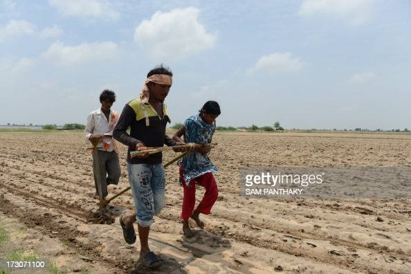 Indian farmers Sonalben Mansukhbhai Bharat Savji and Mansukhbhai Kodabhai plough a field without the assistance of machinery or livestock in Wadla...