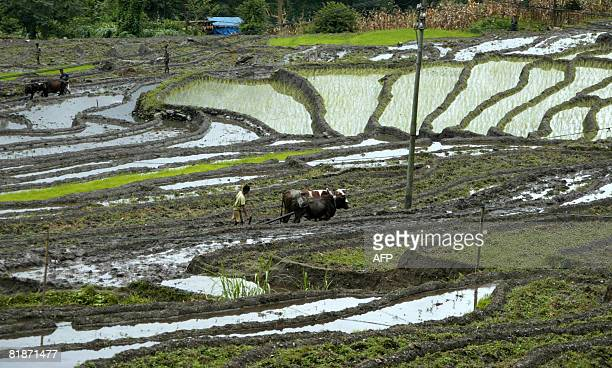 Indian farmers till a field in the village of Kitang on the outskirts of Gangtok on July 9 2008 Leaders of the Group of Eight industrialised nations...