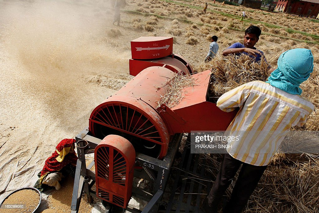Indian farmers use a machine to process wheat in a field of Ghaziabad some 35kms east of New Delhi on April 23 2008 The Indian government has decided...