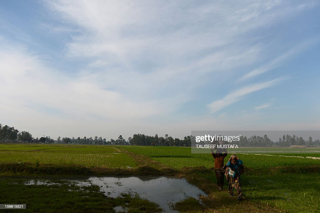 Indian farmers walk through a paddy near the India-Pakistan border in Suchit-Garh, some 36 kms southwest of Jammu, on January 21, 2013. On both sides of the de facto border in Kashmir, villagers living on one of the world's most dangerous flash points have special reason to fear the return of tension between India and Pakistan. The spike in cross-border firing in Kashmir -- a region claimed wholly by both India and Pakistan -- has seen five soldiers killed in recent days and threatened to unravel a fragile peace process that had begun to make progress. AFP PHOTO/ Tauseef MUSTAFA