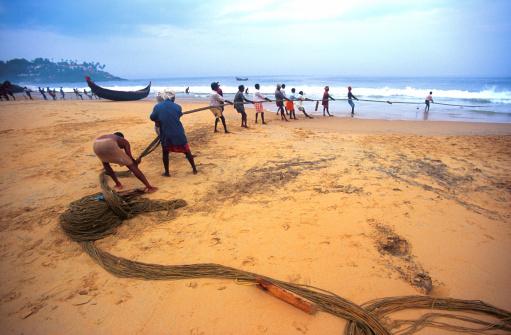 Filet photos et images de collection getty images for Big fishing net