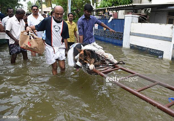 Indian floodaffected people move an injured dog in rainhit areas on the outskirts of Chennai on November 17 2015 India has deployed the army and air...