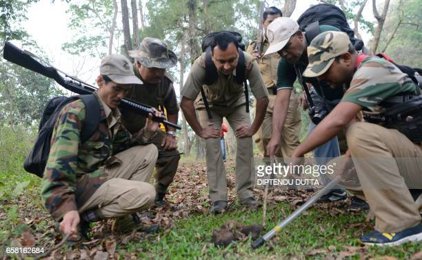 Indian forestry officials count dung density during a wild elephant census in The Mahananda Wildlife Sanctuary on the outskirts of Siliguri March 27...