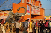 Indian Hindu Devotees look at a statue of an elephant outside a religious tent at the Sangam on the auspicious occasion of Basant Panchami during the...