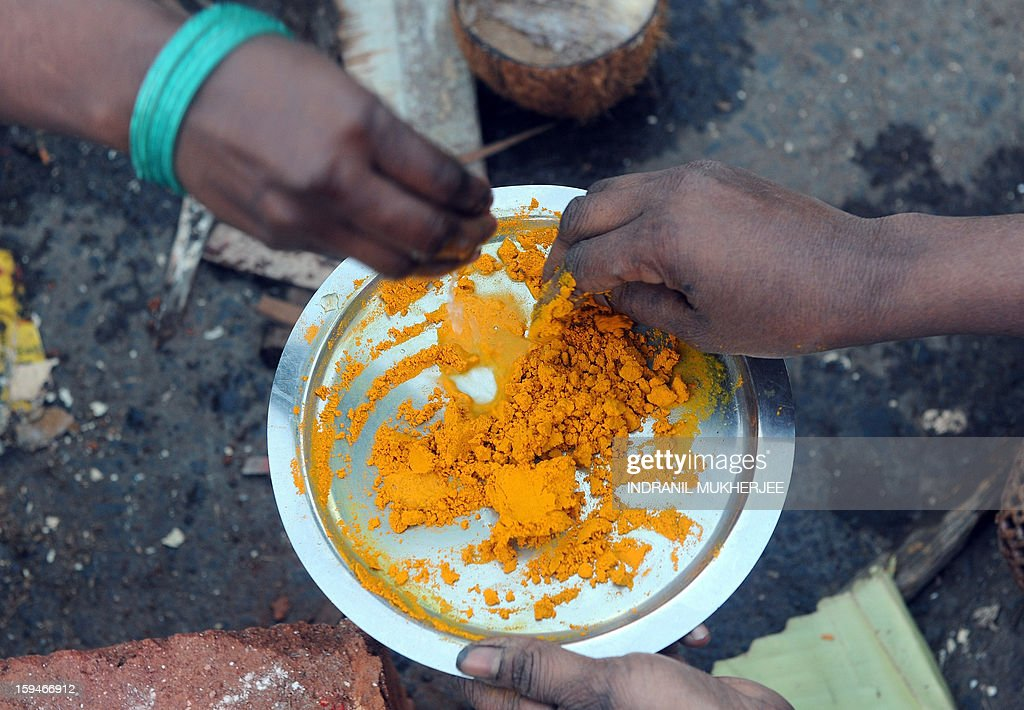 Indian Hindu devotees prepare a paste from turmeric powder during a community function on the occasion of Pongal in Mumbai on January 14, 2013. Pongal is a thanksgiving or harvest festival celebrated by people hailing from the Indian state of Tamil Nadu. Pongal-which coincides with the Hindu festival Makara Sankranthi and is celebrated throughout India as the winter harvest, is usually held from January 13–16. AFP PHOTO/ INDRANIL MUKHERJEE