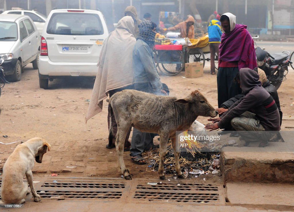 Indian homeless warm themselves around a fire during a foggy and cold day in Allahabad on January 23, 2013.The once-booming Indian economy has been hit by continuing high interest rates in the face of strong inflation, sluggish exports and slow investment. AFP PHOTO/ Sanjay KANOJIA