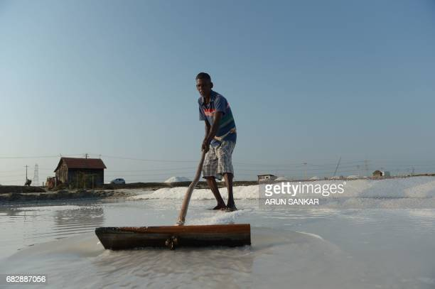 Indian labourer Arul uses a wooden rake as he works on a salt pan at Thoothukudi some 160kms south of Madurai on May 14 where labourers earn an...