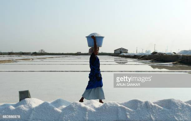 Indian labourer Muniyamma carries a basket with salt as she works on a salt pan at Thoothukudi some 160kms south of Madurai on May 14 where labourers...
