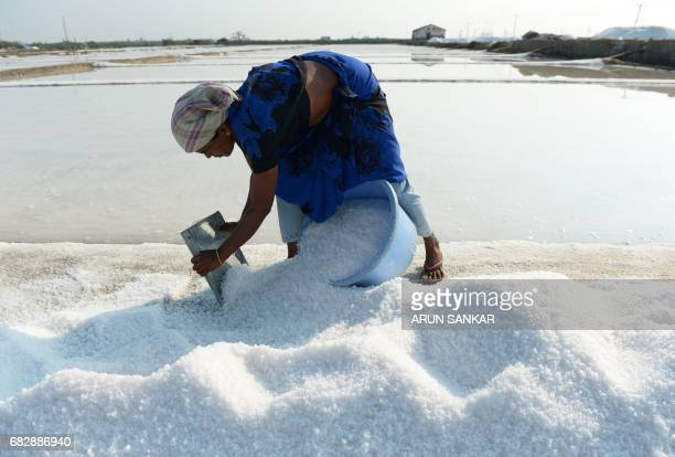Indian labourer Muniyamma fills a basket with salt as she works on a salt pan at Thoothukudi some 160kms south of Madurai on May 14 where labourers...