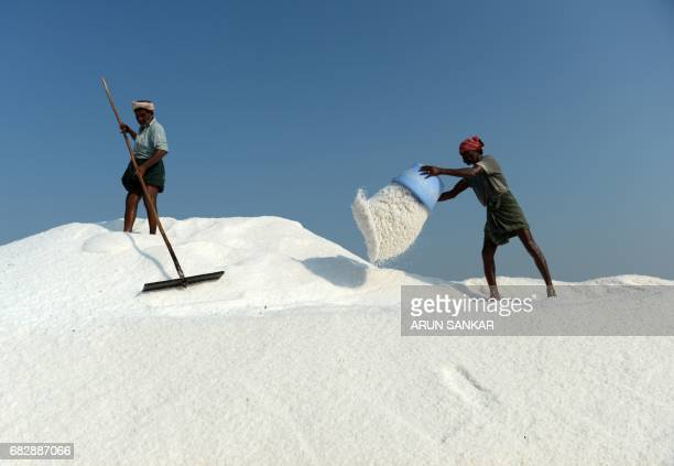 Indian labourers collect salt as they work on a salt pan at Thoothukudi some 160kms south of Madurai on May 14 where labourers earn an average of...