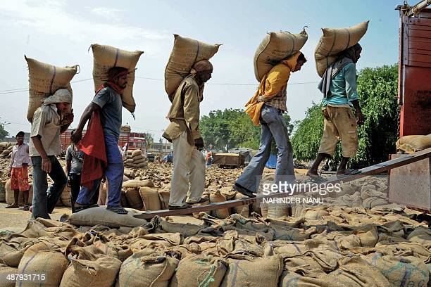 Indian labourers load 50 kilo sacks of wheat into a truck at a grain distribution point on the outskirts of Amritsar on May 3 2014 Punjab is India's...