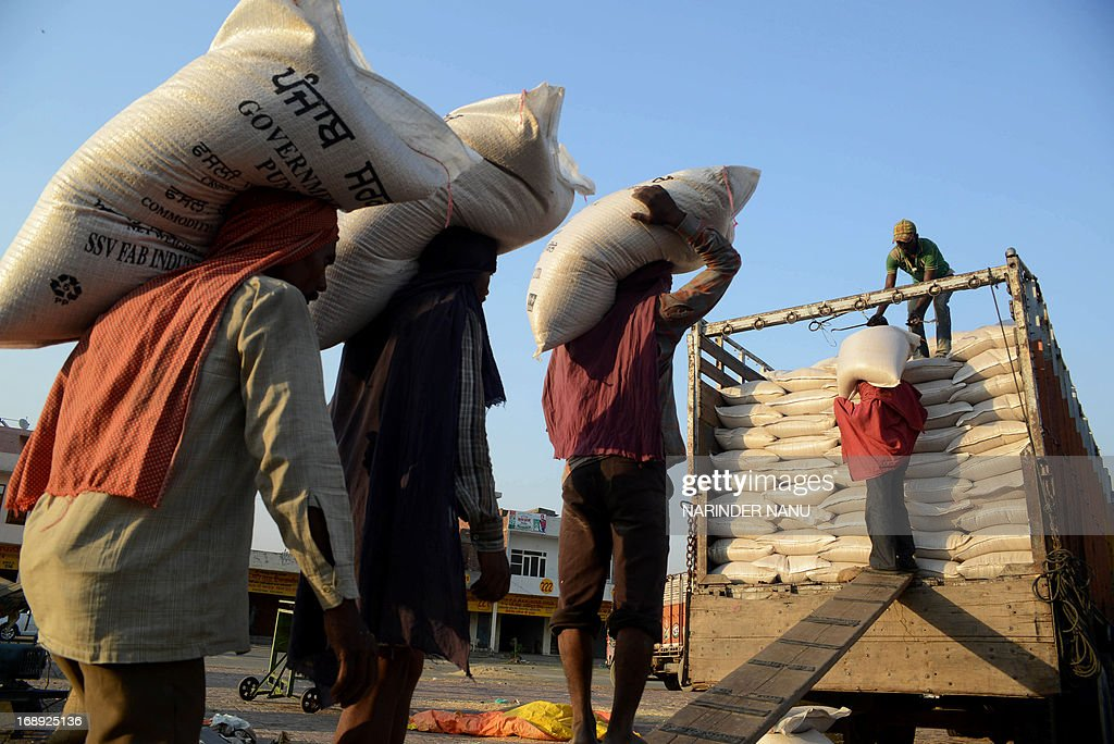 Indian labourers load 50 kilo sacks of wheat into a truck at a local grain distribution point in the outskirts of Amritsar on May 16, 2013. This years wheat harvest is expected to be more bountiful than last year, India's Agriculture Ministry said recently. India which is the second largest producer of wheat in the world is expected to produce about 93.6 million metric tons. Some reports estimate that this will mean a decrease in the local price of wheat and a boost in exports due to the large surplus of grain stored. AFP PHOTO/Narinder NANU