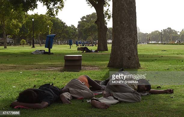 Indian labourers takes a nap under a tree in New Delhi on May 26 2015 At least 800 people have died in a major heatwave that has swept across India...