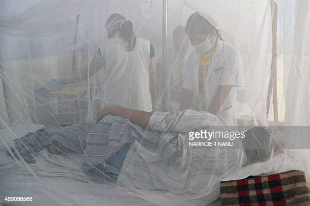 Indian medical staff examine dengue patients in beds covered with a mosquito net in the dengue ward of a civil hospital in Amritsar on September 19...