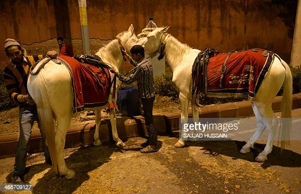 Indian men prepare their horses for a wedding ahead of the bridal procession in New Delhi on January 28 2014 South Asian weddings are often lavish...