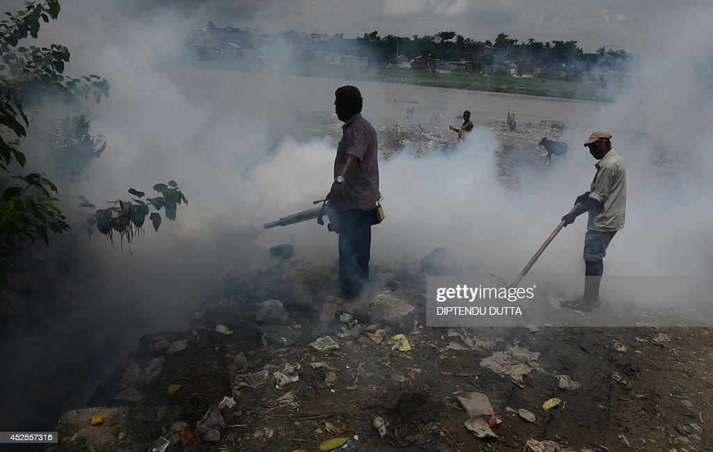 Indian municipal workers fumigate an area where pigs, thought to attract mosquitoes carrying Japanese encephalitis, are kept at a makeshift housing settlement in Siliguri on July 23, 2014. Outbreaks of encephalitis in India have killed more than 150 people, with health officials on alert fearing the death toll could rise further, state government directors said. Some 102 people have died in West Bengal state from the mosquito-borne virus which affects mainly malnourished children and can cause brain damage and seizures, said medical education director Sushanta Banerjee. Many of the deaths have occurred since the onset of the monsoon season in June when mosquitoes breed in large numbers. AFP PHOTO/ Diptendu DUTTA