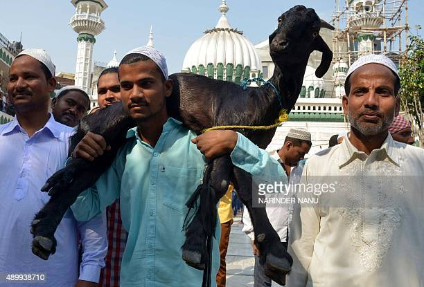 Indian Muslim devotees pose for a photograph with a goat following prayers during the sacrificial festival of Eid alAdha at the Kharudin Mosque in...
