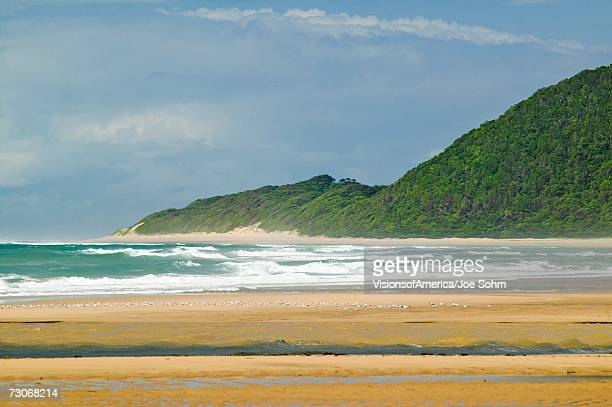 'Indian Ocean seascape and sandy beach at Greater St. Lucia Wetland Park World Heritage Site, St. Lucia, South Africa'