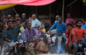 Indian participants ride in the 'Ekka' race in Allahabad on July 14 2014 The annual race takes place during the Hindu holy month of Shravana AFP...