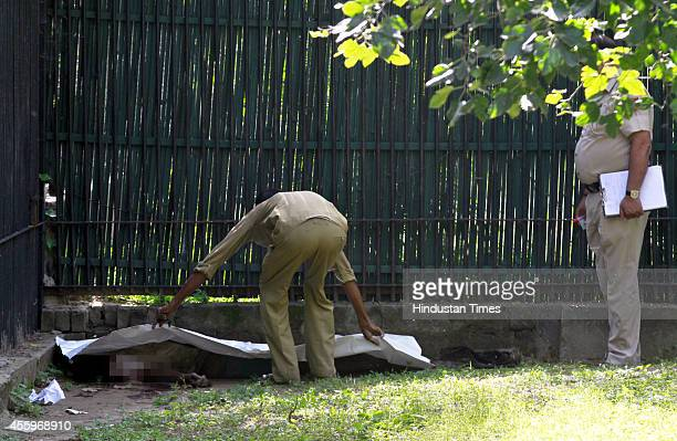 Indian police and zoo personnel covering the body of a 20 year youth who was killed by a white tiger after he fell inside its enclosure at the Delhi...