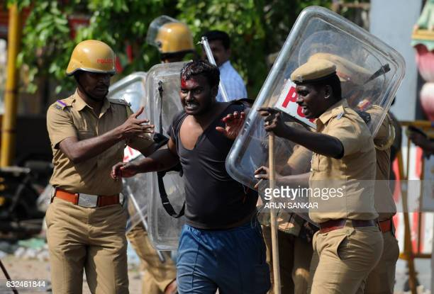 TOPSHOT Indian policemen detain an injured protester at a demonstration against the ban on the Jallikattu bull taming ritual in Chennai on January 23...