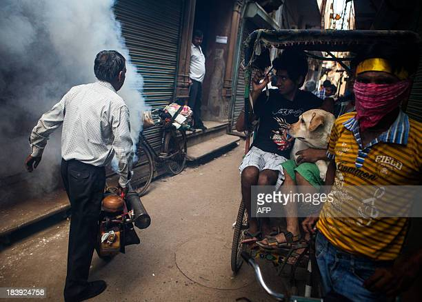 Indian residents and their dog wait for a municipal worker fumigating an alley to pass during a dengue prevention spraying in the Old Quarters in New...