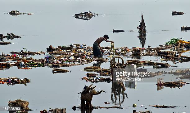 Indian scavengers look for coins and other valuable items amongst the religious offerings from devotees and leftover wooden frames of Lord Ganesh...