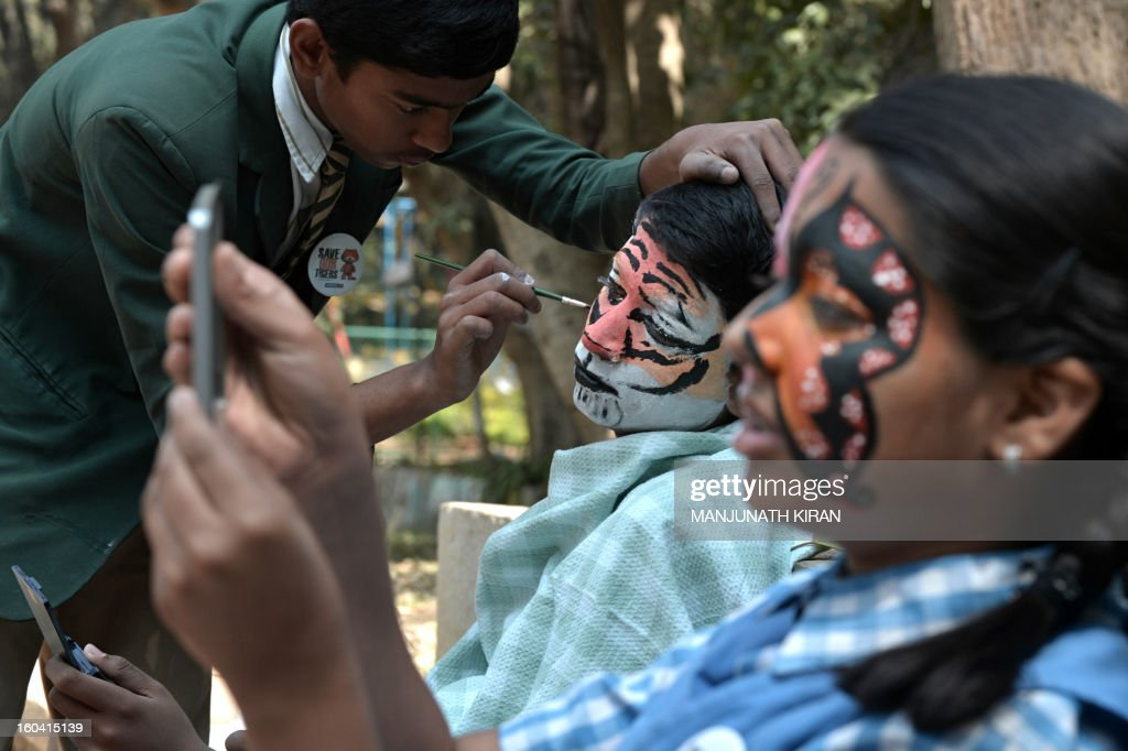 Indian school children have their faces painted as they take part in the 'Save Tiger Campaign' organised by the environmental magazine 'Sanctuary Asia' and conservation program 'Kids for Tigers' in Bangalore on January 31, 2013. The tiger census in India for 2012 stated that the total number of tigers in the country is between 1500 and 1800. AFP PHOTO/Manjunath KIRAN