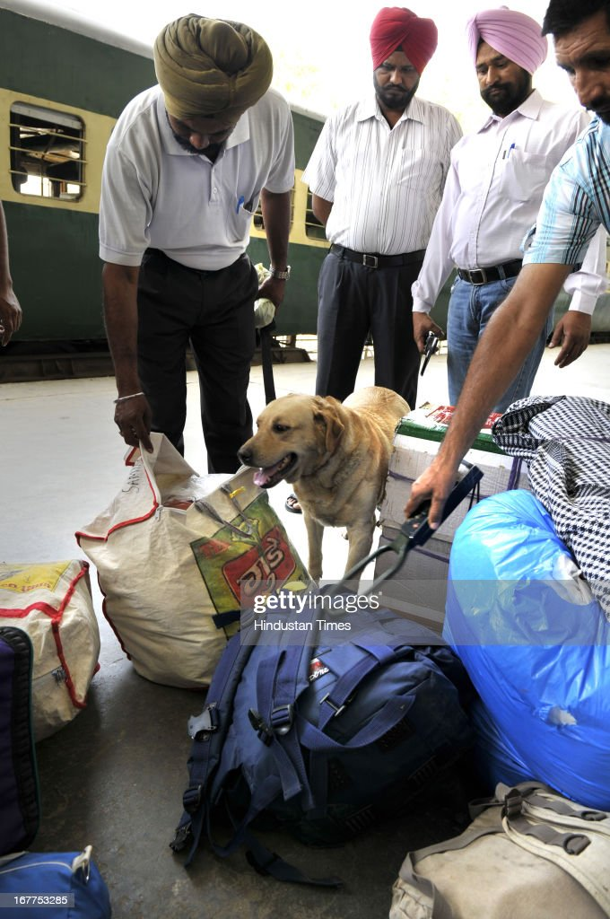 Indian security men dressed in civil dress checking the luggage of Pakistan-India bound Samjhauta Express train passengers with metal detector and sniffer dog at Attari Railway Station at India-Pakistan Attari border on April 29, 2013 near Amritsar, India. Security has been enhanced at border in of wake deadly attack on Indian prisoner Sarabjit Singh in Pakistan Jail.
