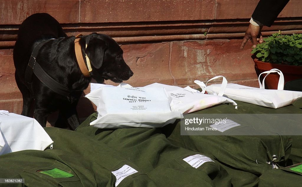Indian security personnel with sniffer dog checking sacks containing the 2013-14 union budget papers at the parliament on February 28, 2013 in New Delhi, India. Chidambaram will present one of the most highly anticipated budgets of recent years, a blueprint for austerity that forms the centre piece of India's efforts to stave off a ratings downgrade. Investors will watch closely to see whether he will fulfill his promise of fiscal prudence.