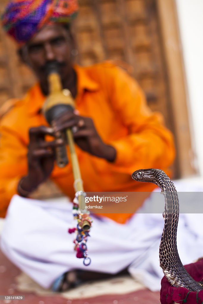 Indian Snake Charmer : Stock Photo