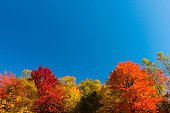 Indian Summer in New England, USA