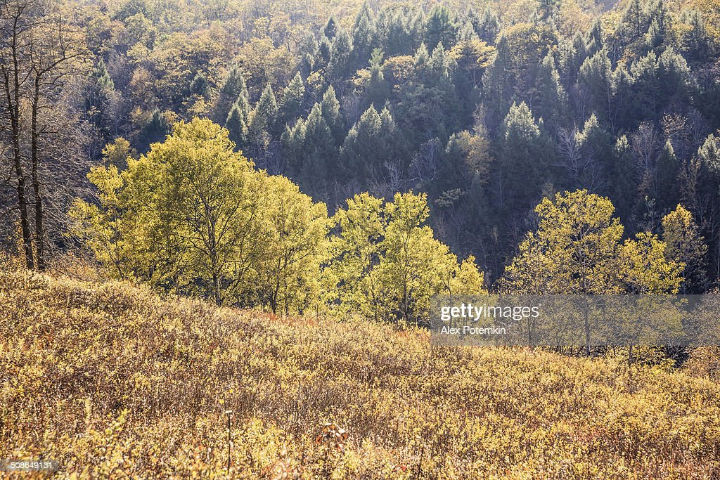 Indian summer in Pocono Mountains : Stock Photo