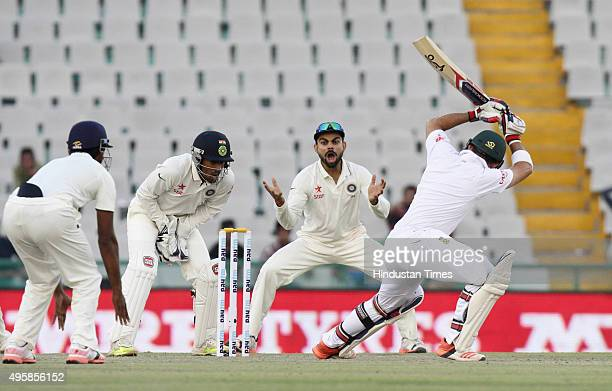 Indian team appeals for a wicket as South African batsman Hashim Amla during the first test match at PCA Stadium on November 5 2015 in Mohali India
