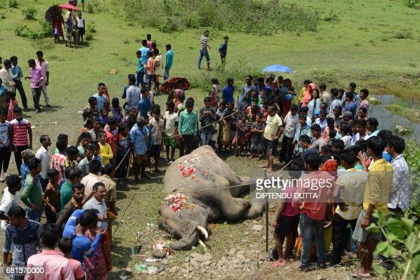 TOPSHOT Indian villagers and forestry workers gather around the carcass of an elephant as it lies near railway tracks after being struck by a...