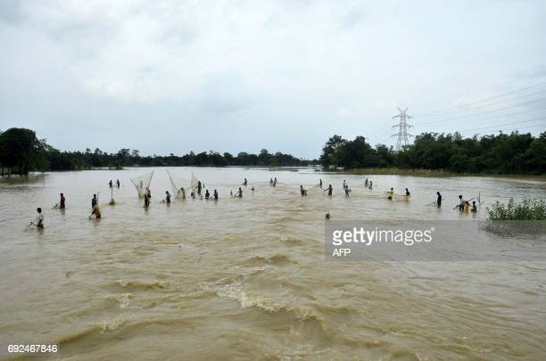 Indian villagers join together to fish with large nets on poles in a flooded area of Dharmanagar district in the northeastern state of Tripura on...