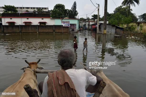 Indian villagers make their way through flood waters near submerged homes in Kishanganj village in Bihar state on August 16 2017 At least 221 people...