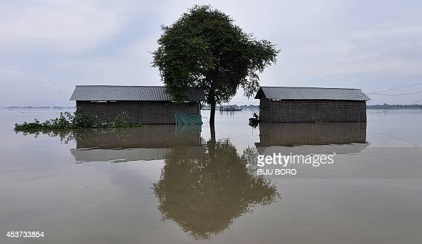 Indian villagers paddle a boat through floodwaters near partiallysubmerged houses in Balimukh village in the Morigaon district of Assam state on...