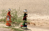 Indian villagers walk through parched land as they approach a waterhole in the village of Gajdinapur in Patan District some 200kms from Ahmedabad on...