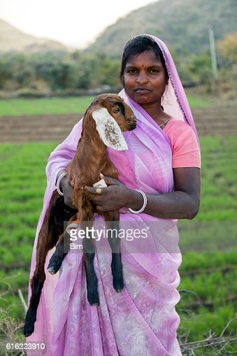 Indian woman holding a small goat, Udaipur, Rajasthan, India : Stockfoto