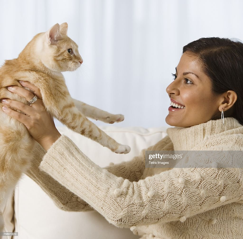 do cats have prostates