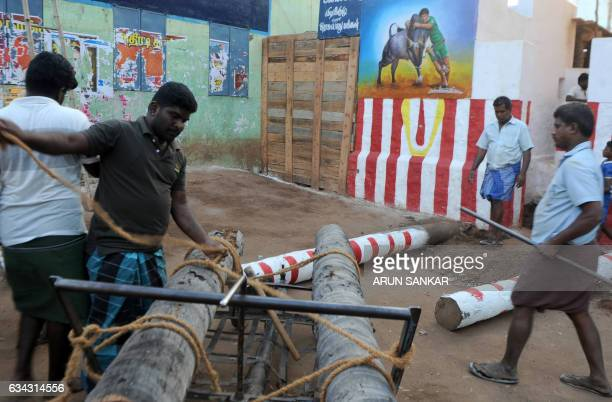 Indian workers prepare the venue ahead of the bull taming event 'Jallikattu' in Madurai on February 8 2017 / AFP / ARUN SANKAR