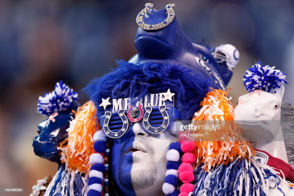 Indianapolis Colts fan looks on before the game against the Miami Dolphins at Lucas Oil Stadium on November 4, 2012 in Indianapolis, Indiana.