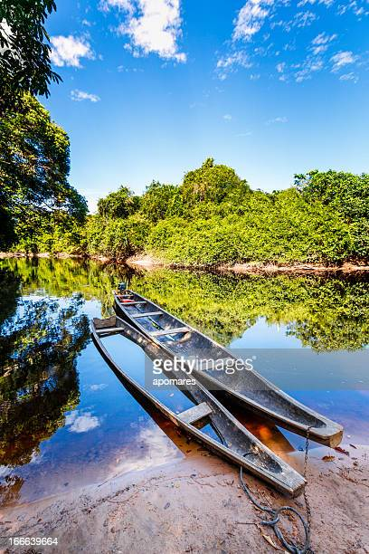 Indigenous canoes on a river in the Amazon state Venezuela