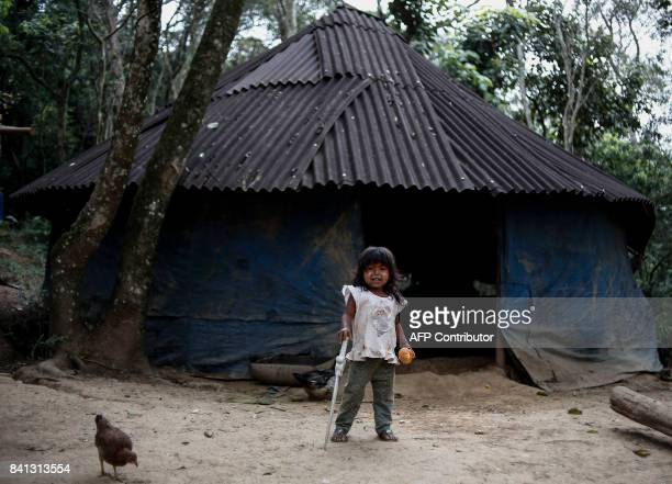 A indigenous child from a Guarani tribe stands in front of a hut in the Pico de Jaragua national reserve in Sao Paulo Brazil on August 31 2017 A...