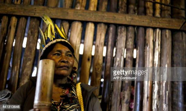 A indigenous native from a Guarani tribe stays in his hut in the Pico de Jaragua national reserve in Sao Paulo Brazil on August 31 2017 A group of...