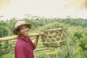 Indonesia, Bali, farmer with basket of rice crop smiling, portrait